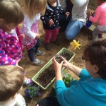 Planting May Flowers!